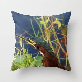 Green Heron Portrait Throw Pillow