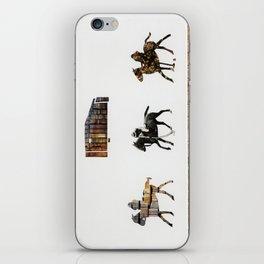 Marco Polo iPhone Skin