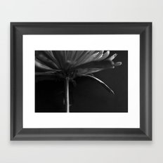 Secret Light no.4 Framed Art Print