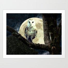 Barn Owl Bird Moon Modern Country Decor Farmhouse Art A497 Art Print
