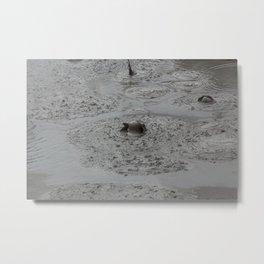Bald Head Hot Mud Bubble Metal Print
