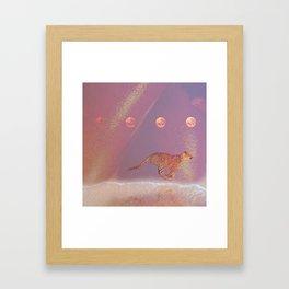 beach cheetah Framed Art Print