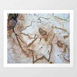 Maple Leaf Etching Art Print