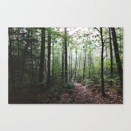Yokun Ridge IV Canvas Print