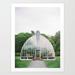 Botanical greenhouse in Ireland Art Print