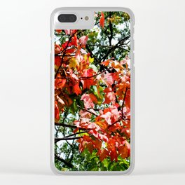 Fall is Here Clear iPhone Case