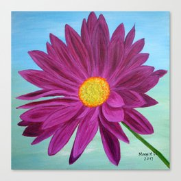 Daisy/close up Canvas Print