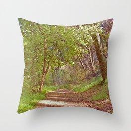 Shady Path Through Woods Throw Pillow