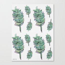 Plant, drawing pattern Canvas Print
