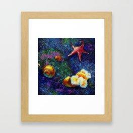 Aquatic (1 of 3) Framed Art Print