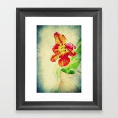 Parrot Tulips Framed Art Print