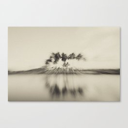 Zooming Tree Canvas Print