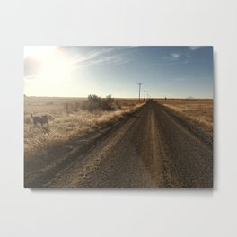 Where the Pavement Ends Metal Print
