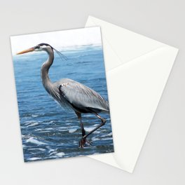 Great Blue Heron on the Pacific Coast in Costa Rica Stationery Cards