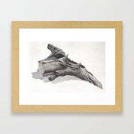 Fallen Tree Framed Art Print