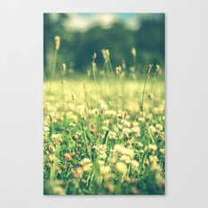 My Heart Was Wrapped in Clover (the night I looked at you) Canvas Print