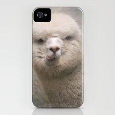 Alpaca! iPhone (4, 4s) Slim Case