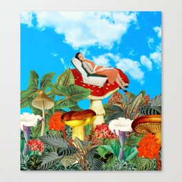 This is nice Canvas Print