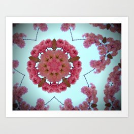 Blossom K4 Art Print