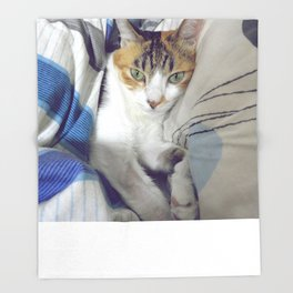 Getting Comfy Throw Blanket