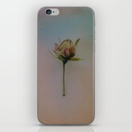 Once Upon a Time a Dancer Rose iPhone Skin