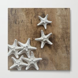 starfish 6 Metal Print
