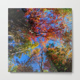 Colorful, Autumn In New Hampshire Metal Print