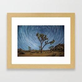 Joshua Tree Star Trail Framed Art Print