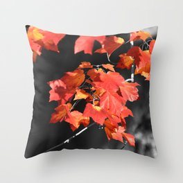Cold Fall Throw Pillow