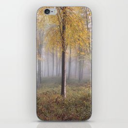 Autumal Hooke iPhone Skin