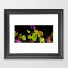 Plant moment. 2 Framed Art Print