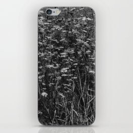 Black and White Queen Anne's Lace Hillside iPhone Skin