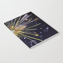 There is a Spark Notebook