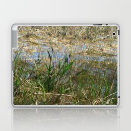 Beauty in the Everglades Laptop & iPad Skin