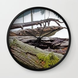 FALLEN TREES ALONG MOUNTAIN LAKE TRAIL Wall Clock