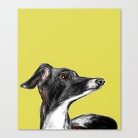 greyhound Canvas Prints featuring Greyhound by James Peart