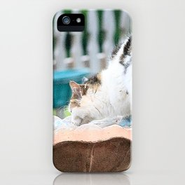 Kit Kat in the Fountain iPhone Case