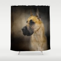 great dane Shower Curtains featuring Dashing Great Dane by Jai Johnson