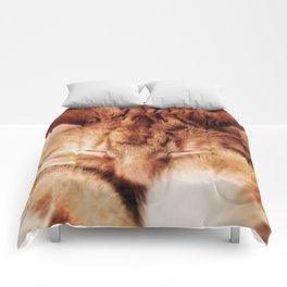 Garfield Sleeps Comforters