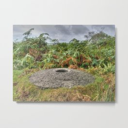 Millstone and bracken Metal Print