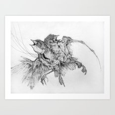 Specimen Art Print