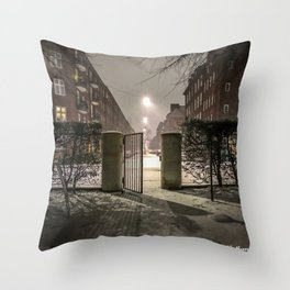 Winter is apparently already here Throw Pillow