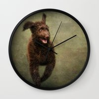 muppet Wall Clocks featuring I am not a Muppet...I am a Labradoodle!!!! by Pauline Fowler ( Polly470 )