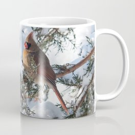 Sunny Winter Cardinals in the Adirondacks Coffee Mug