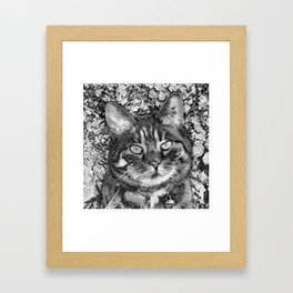 AnimalArtBW_Cat_20170903_by_JAMColorsSpecial Framed Art Print