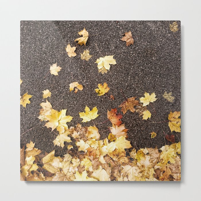 Gold yellow maple leaves autumn asphalt road Metal Print