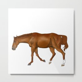 Phar Lap, sorrel/chestnut Thoroughbred (without halter) Metal Print