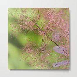 botanical coral  Metal Print