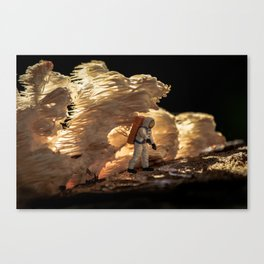 Home Planet #7 Canvas Print