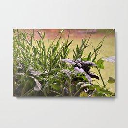 Herbal Garden Delight Metal Print